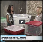 Streamlined Space, Storing Christmas Decorations